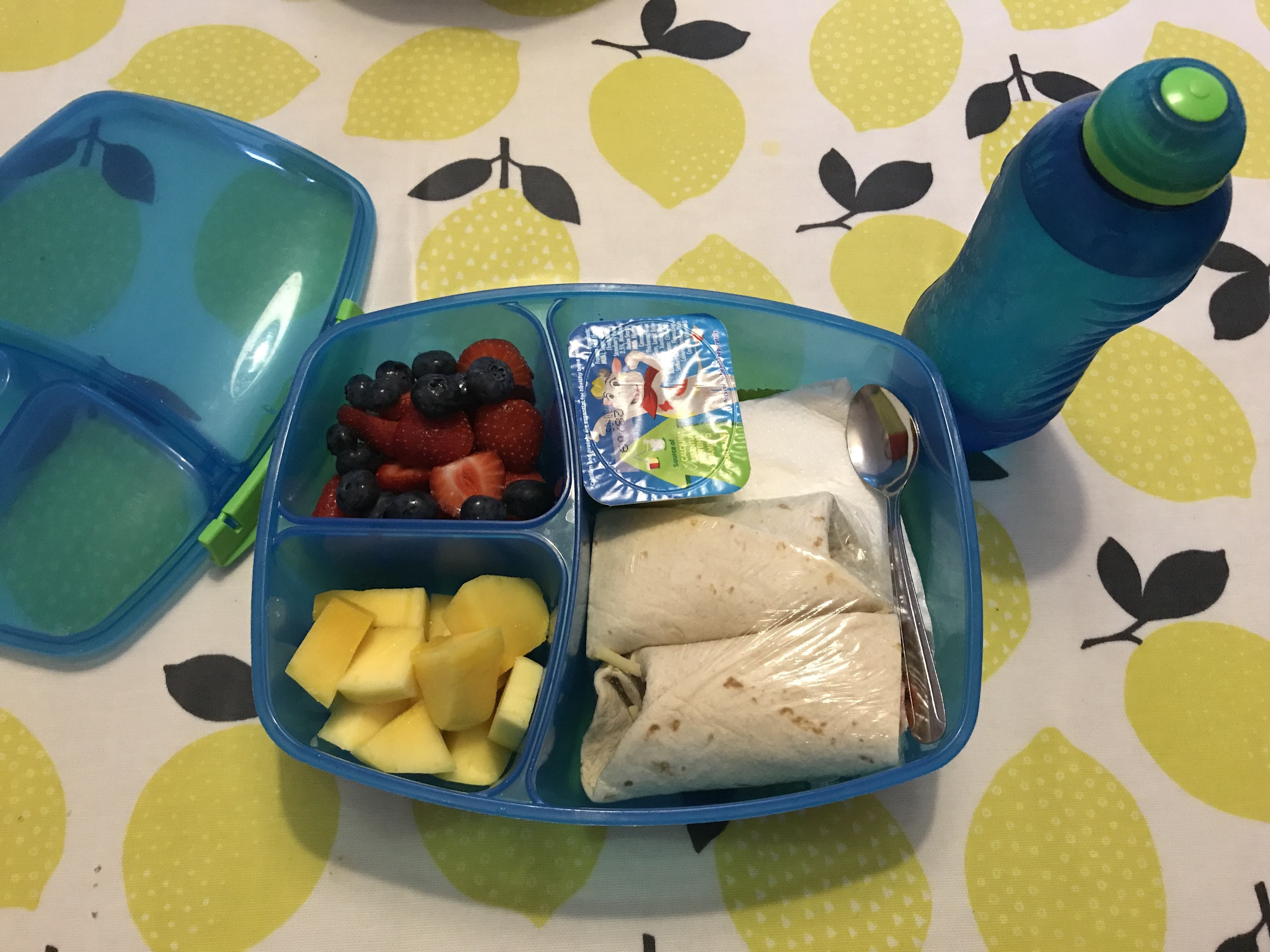 school lunches vs packing lunch essay Choose an insulated lunch box or one with a freezer pack  ask children to keep  packed lunches in their school bag and to keep their bag out of direct sunlight.